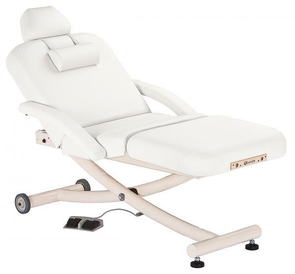 Ellora Vista Salon Massage Table